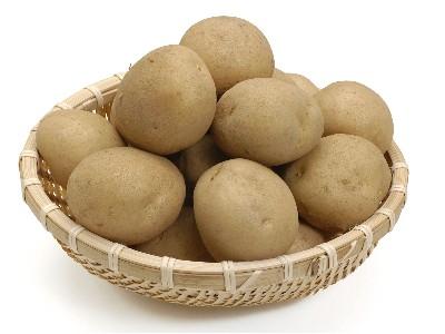 嘉友问答:嘉友1MM土豆饼干的土豆来自哪里?