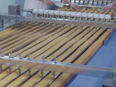 嘉友食品-饼干分类设备