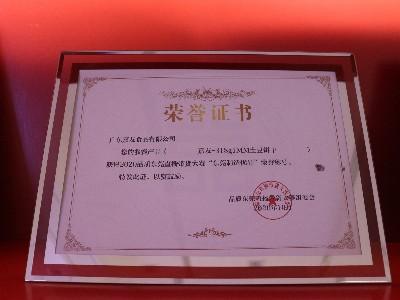 """荣获东莞直播带货大赛""""东莞制造优品""""荣誉证书"""